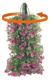 zylinder ampel zur rundumbepflanzung mit fr hlingsblumen bunten sommerblumen k chenkr utern. Black Bedroom Furniture Sets. Home Design Ideas